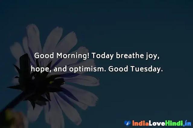 good morning shayari for tuesday
