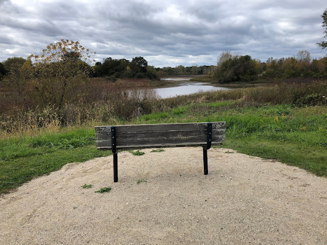 Peaceful bench for pondering at Buffalo Creek Forest Preserve.