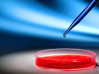 Pengertian Bioteknologi Terlengkap