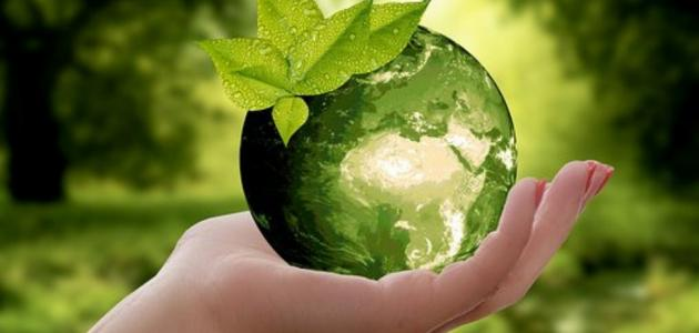 السياحة البيئية و الايكولوجية
