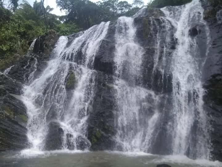 Cascadas de Guacimal