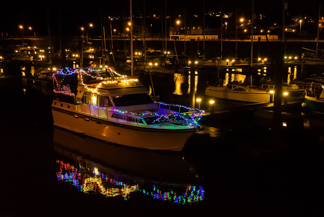 Photo of Ravensdale's Christmas lights