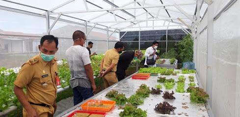 Kunjungan Bupati Bone bersama rombongan di kebun hidroponik B-One Residance