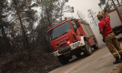 Μεγάλη φωτιά έχει ξεσπάσει εδώ και λίγη ώρα στο Τέροβο. Η φωτιά καίει σε αγροτολιβαδική έκταση και έχει πάρει διαστάσεις.