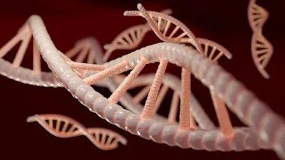 Orang Selingkuh Mengalami Mutasi Gen