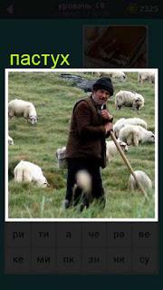 на пастбище пастух с овцами 19 уровень 667 слов
