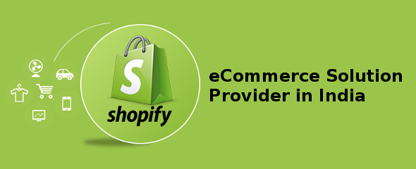 Ecommerce solution provider in india