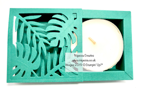 Stampin Up Tropical Chic Shadow Box frame Nigezza Creates