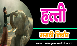 essay-on-elephant-in-marathi
