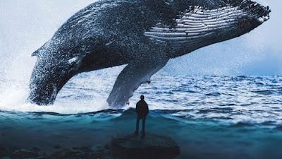 https://en.wikipedia.org/wiki/Blue_whale