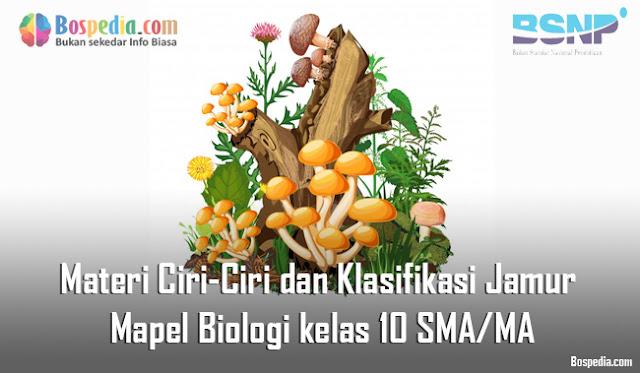 Materi Ciri-Ciri dan Klasifikasi Jamur Mapel Biologi kelas 10 SMA/MA