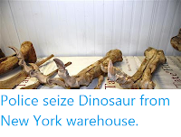 http://sciencythoughts.blogspot.co.uk/2012/06/police-seize-dinosaur-from-new-york.html