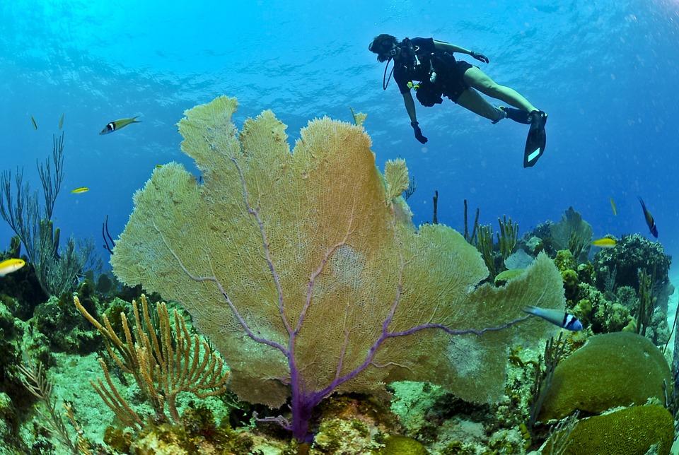 समुद्र कितना गहेरा है? समुद्र की उत्पति कैसे हुई? | How deep is the Ocean