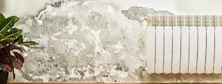 Trucos para eliminar la humedad de la habitación