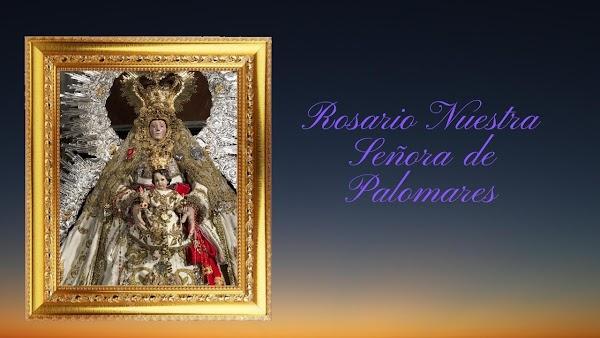 📹Vídeo📹 del Único Rosario que se ha celebrado en Andalucia: Rosario de la Aurora de Nuestra Señora de Palomares😍Patrona de Trebujena