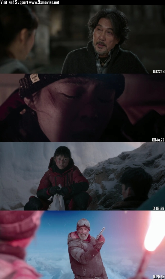 Wings Over Everest 2019 Dual Audio Hindi 720p BluRay 480p [950MB 350MB]