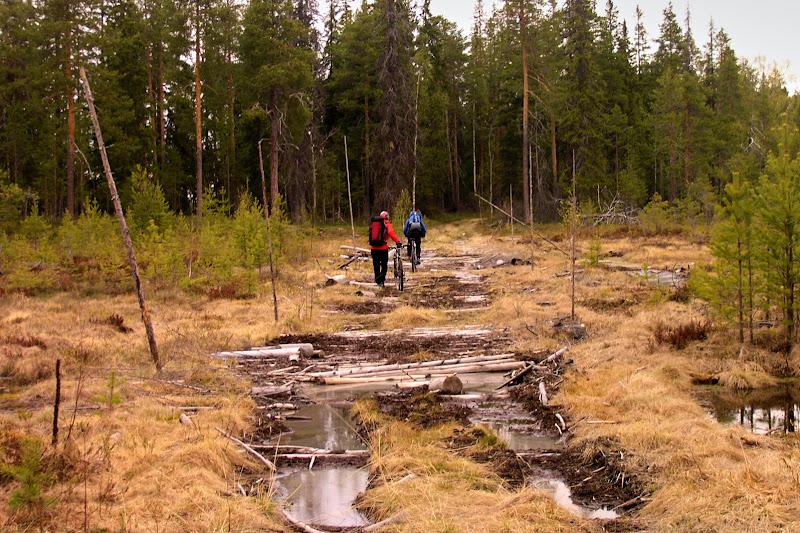 Пересекаем болото по гати