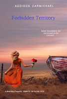 https://bookswithnoel.blogspot.com/2019/05/forbidden-territory-by-addison.html
