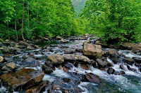 Flowing Stream - Photo by Mitchell Kmetz on Unsplash