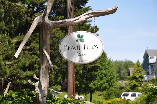 Không chỉ nổi tiếng với nhiều loại nông sản tươi ngon, Beach Plum Farm còn sở hữu một không gian đẹp như mơ khiến bất cứ du khách nào từng đặt chân đến cũng phải mê mẩn: