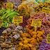 Αποξηραμένα φρούτα γιατί