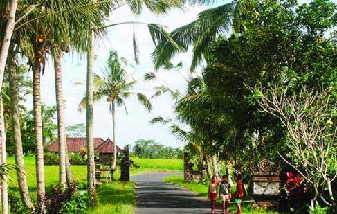 Desa Kendran Gianyar Desa Wisata Bali