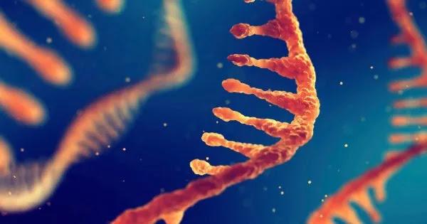 Παραδοχή πανεπιστημίου Στάνφορντ: «Ελάχιστα γνωρίζουμε για τον τρόπο με τον οποίο λειτουργούν τα εμβόλια RNA»!