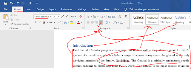 How to make formal document in Ms Word?
