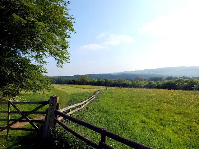 campos de cultivo por la campiña inglesa