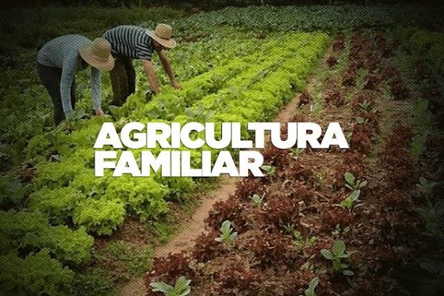 Agricultura familiar a todo vapor em Baixa Grande, gestão trouxe grandes avanços em apenas 7 meses , confira: