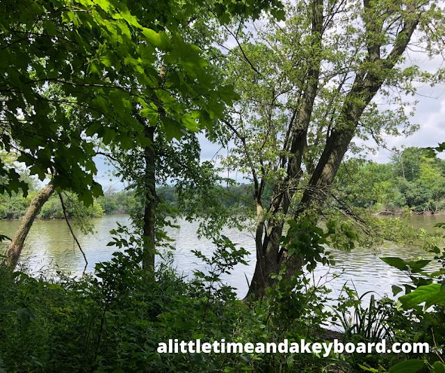 Tekakwitha Woods Forest Preserve runs along the Fox River.