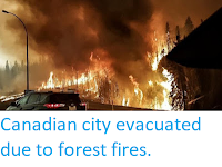 https://sciencythoughts.blogspot.com/2016/05/canadian-city-evacuated-due-to-forest.html