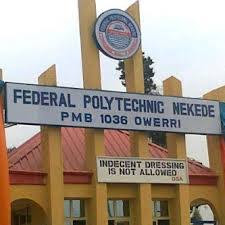 nekede poly two sittings