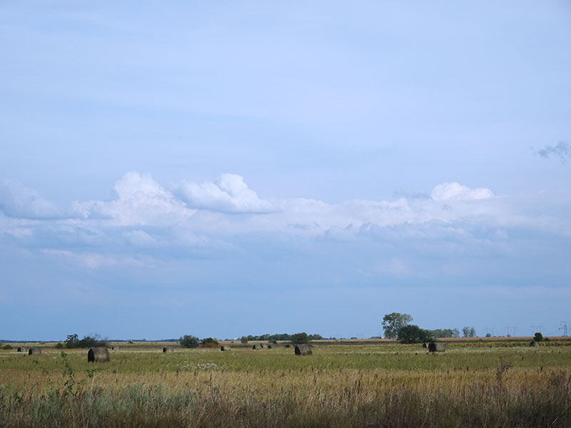 Hungarian_Great_Plain_Field_Countryside