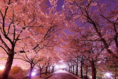 Gambar pemandangan korea