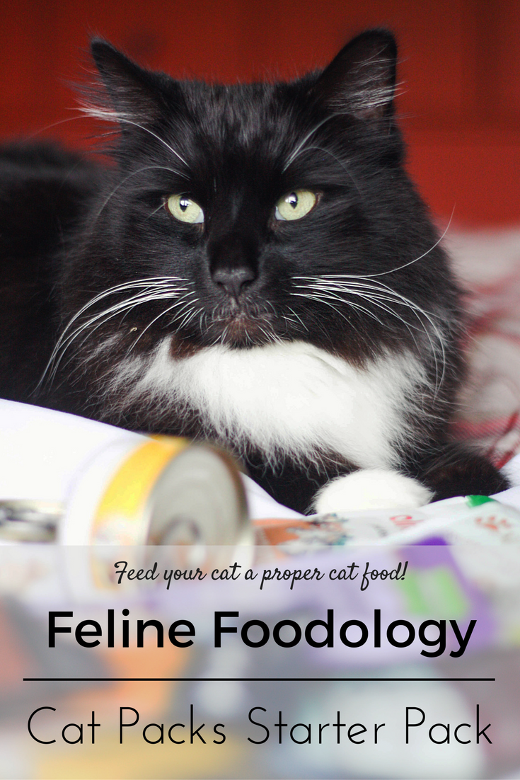 Feline Foodology