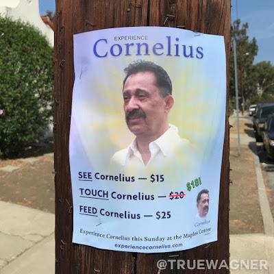 Geld verdienen - lustige Flugblatt Idee - witziges Bilder zum lachen