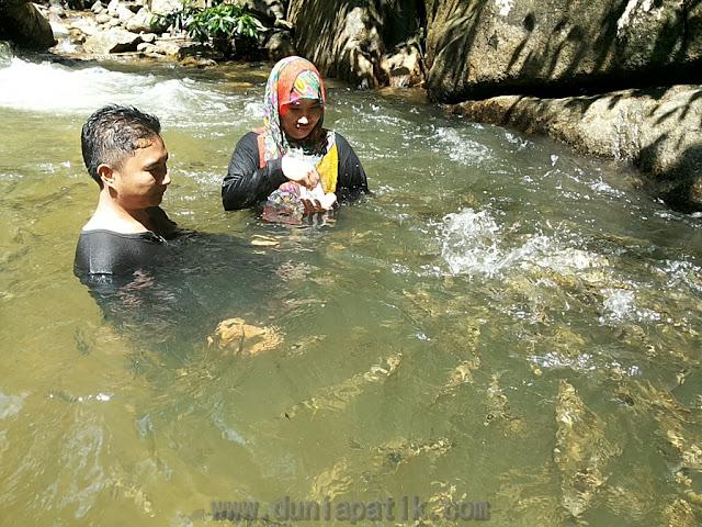 Bermain dengan ikan di Sungai Chiling