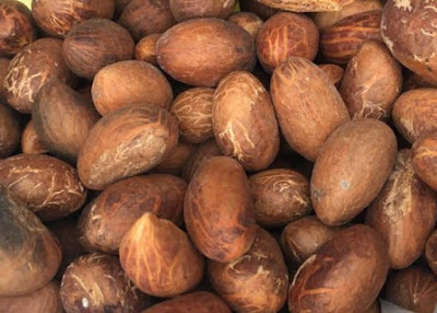 sexuaul-benefits-of-bitter-kola-men-health-ghana-nigeria-maca-garcinia