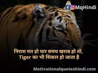Tiger Shayari