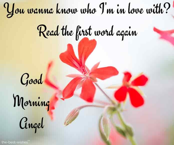 good morning angel love quotes