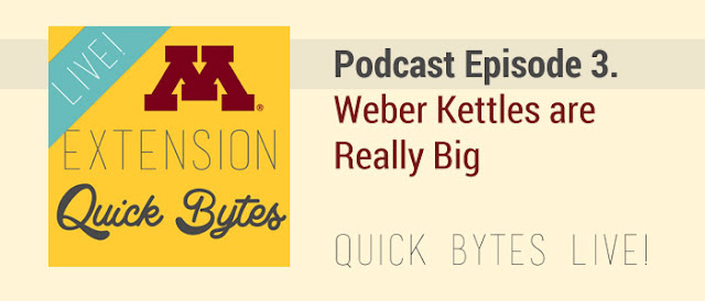 Podcast Episode 3. Weber Kettles are Really Big