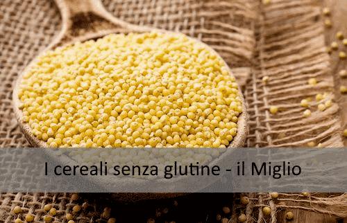 I cereali senza glutine - il Miglio