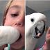 Kορίτσι ζητά απ΄τον παπαγάλο της, να της βγάλει το δόντι που κουνιέται και δημιουργούν το βίντεο της ημέρας