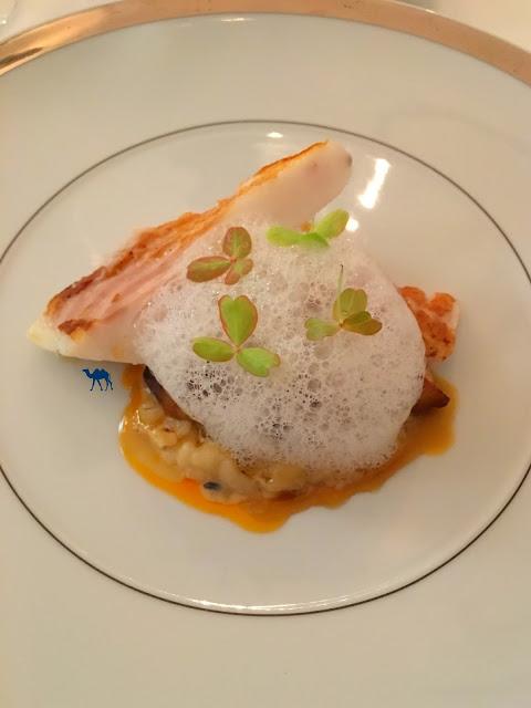 Le Chameau Bleu - Neige d'été - Restaurant japonais Paris - Turbot Poêlé