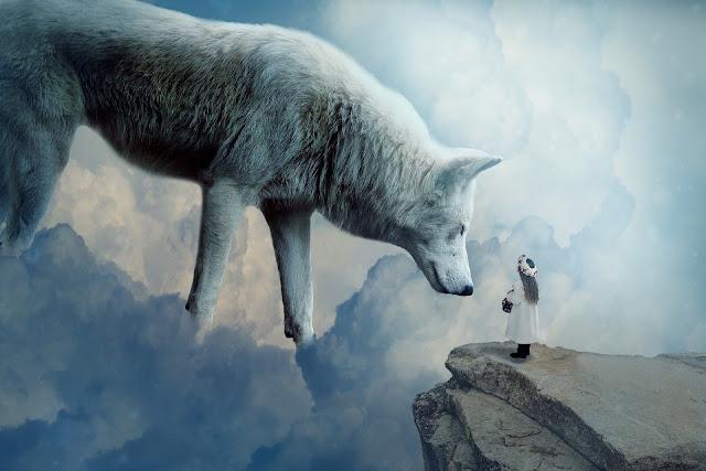 wilk w snach sennik co oznacza sen z wilkiem marzenia fantazje
