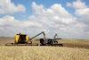 Agricultores não devem perder prazo de aviso de sinistro