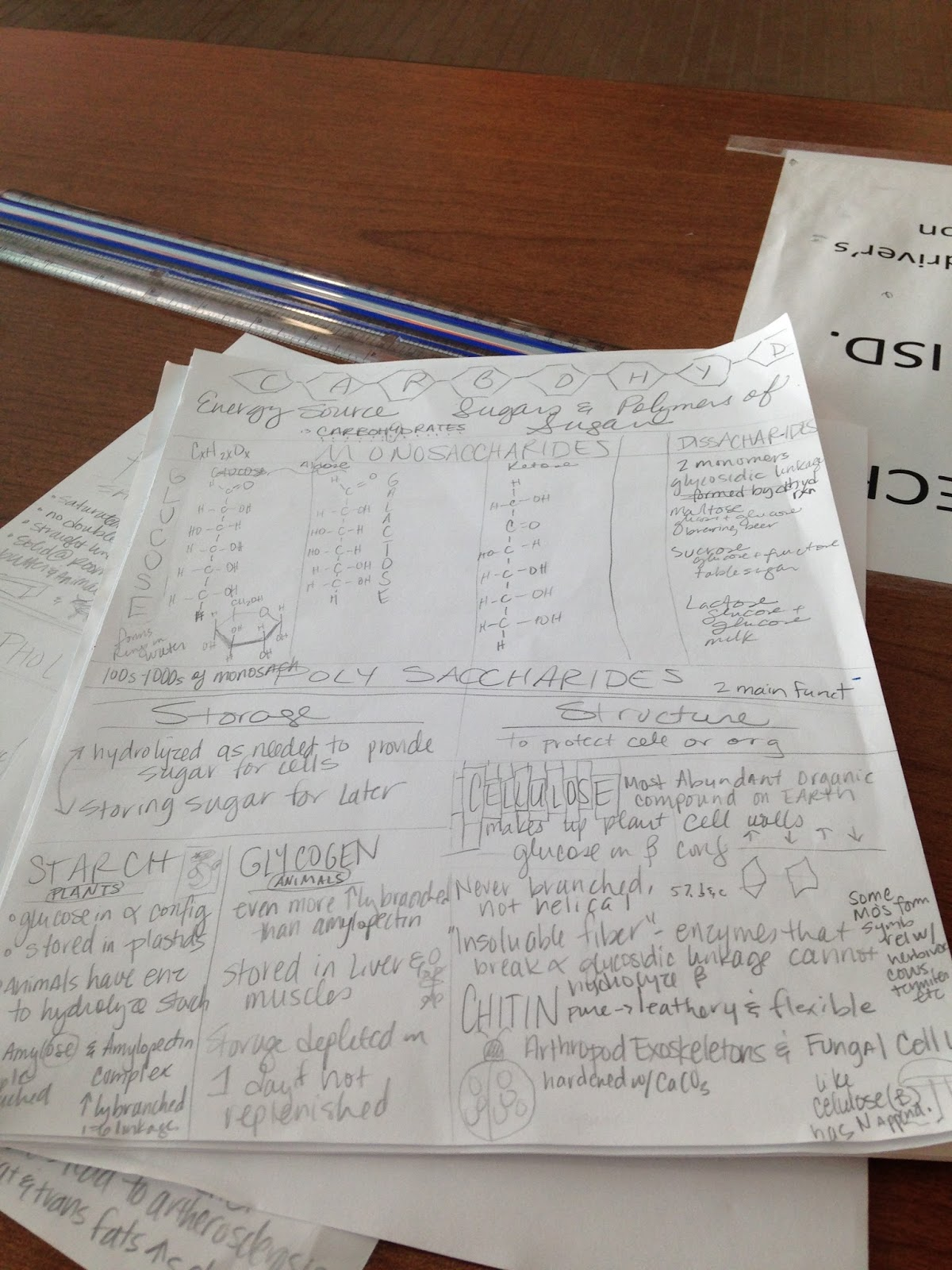 We Teach High School Carbohydrates Summary Sheet