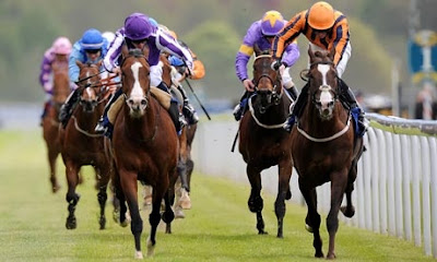 Lay bets - winning race tips