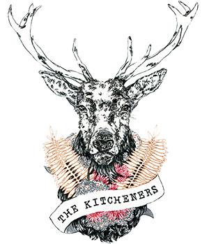Dvlop The Kitcheners Emotive Lr Preset Pack Download